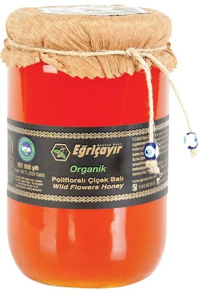 Eğriçayır Polifloralı Organik Çiçek Balı 850 Gr