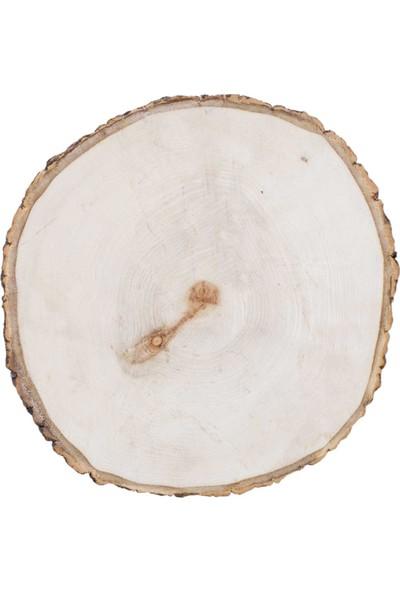 Piyop Ağaç Dilimi 20 x 2 cm