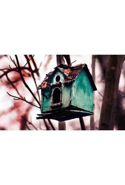 Aktunc Kapı Paspası Kuş Yuvası