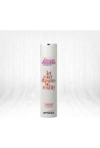 Artego Easy Care Dream Shampoo Anti-Damage Yıpranma Karşıtı Onarım Şampuanı 250 ml