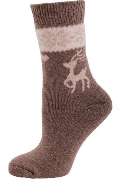 Panthzer Casual Wool Socks Erkek Çorap Bej Kahverengi