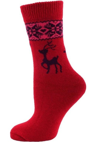 Panthzer Casual Wool Socks Kadın Çorap Kırmızı Lacivert