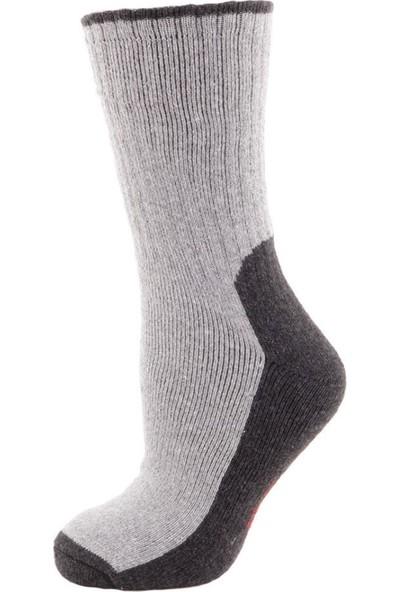 Panthzer Trekking Erkek Çorap Gri