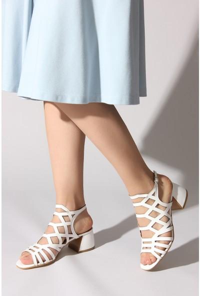 Rovigo Plus Kadın Beyaz Ayakkabı