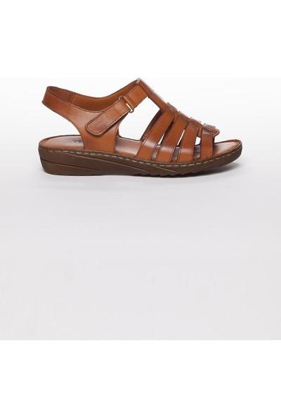 Tarçın Hakiki Deri Taba Günlük Kadın Sandalet Ayakkabı Trc67-0246
