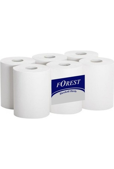 Fotoselli Hareketli Kağıt Havlu 21 Cm 6 Rulo 3 kg