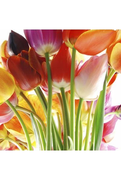 Vizyon Sanat Çiçekler