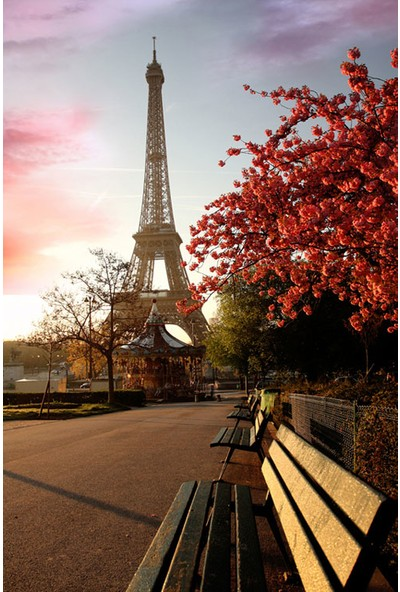 Vizyon Sanat Fransa Eyfel Kulesi