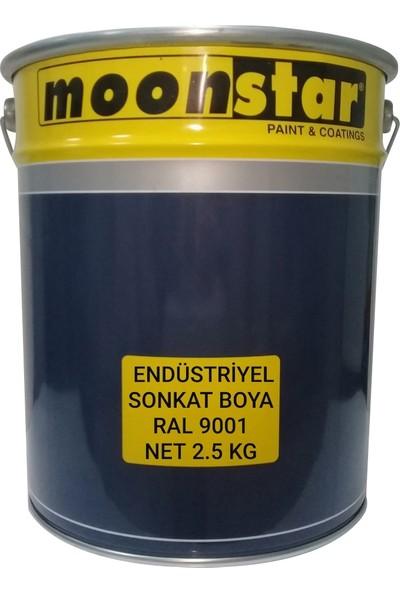 Moonstar Endüstriyel Boya Ral 9001