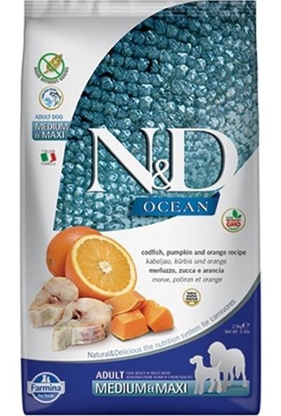 N&D Ocean Balıklı Portakallı Tahılsız Yetişkin Köpek Maması 2,5 Kg