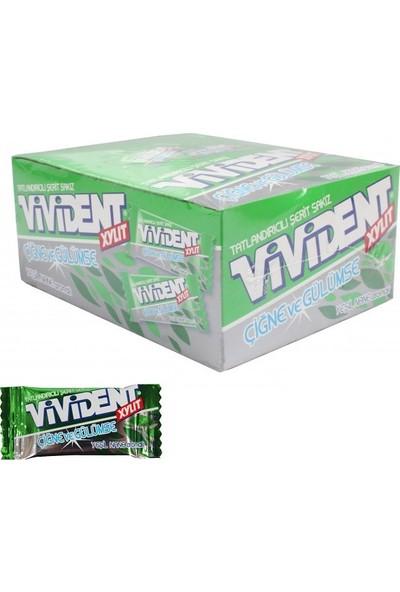 Vivident Yeşil Nane Aromalı Tekli Sakız 250' li