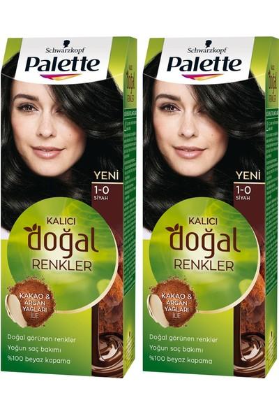 Palette Kalıcı Doğal Renkler 1-0 Siyah x 2 Paket