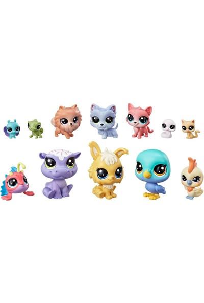 Littlest Pet Shop Miniş Koleksiyoner Seti E3034- E2072