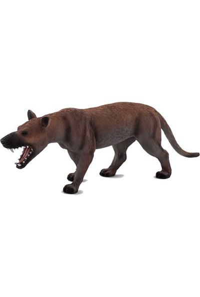 Animal Planet Hyaenodon Gigas Model Figür