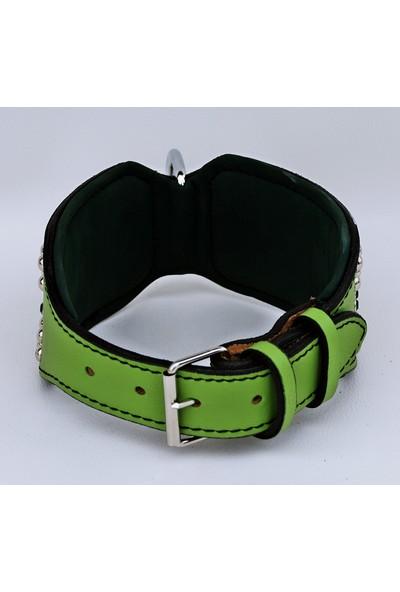 Ac Leather Köpek Boyun Tasması Extreme Zımbalı Yeşil