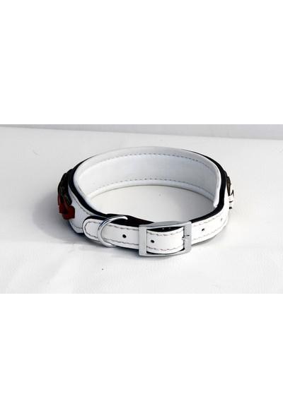 Ac Leather Köpek Boyun Tasması Kırmızı Beyaz