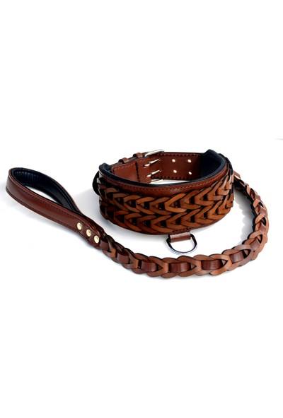 Ac Leather Köpek BoyunTasması Kahverengi