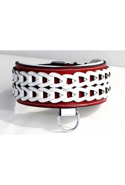Ac Leather Çift Örgü Köpek Boyun Tasması Kırmızı