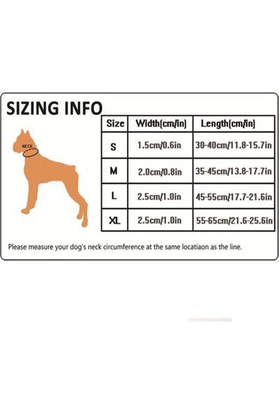 Ergocomfort Köpek Boyun Tasması S Mavi