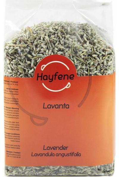 Hayfene Lavanta - 150 gr