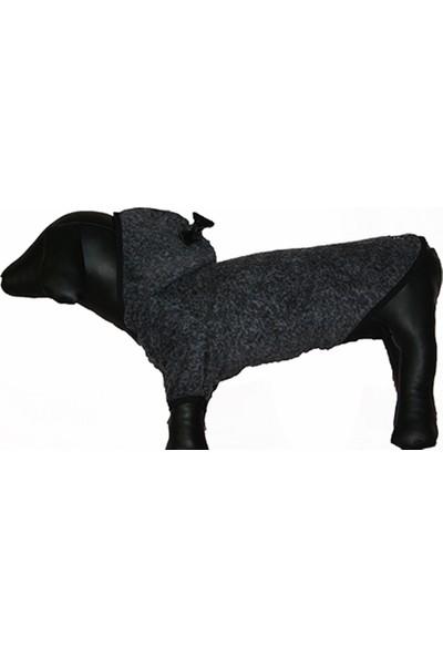 Madam Yorki Köpek Kapüşonlu Sweatshirt