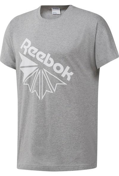 Reebok Classics Graphic Tee Erkek T-Shirt
