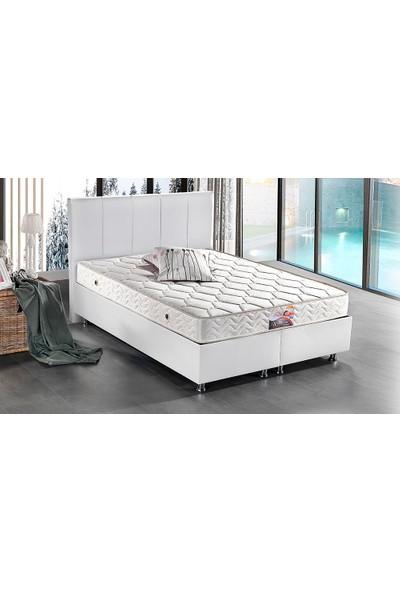 Yıldız Mobilya Wella Yatak Seti Baza + Başlık + Yatak