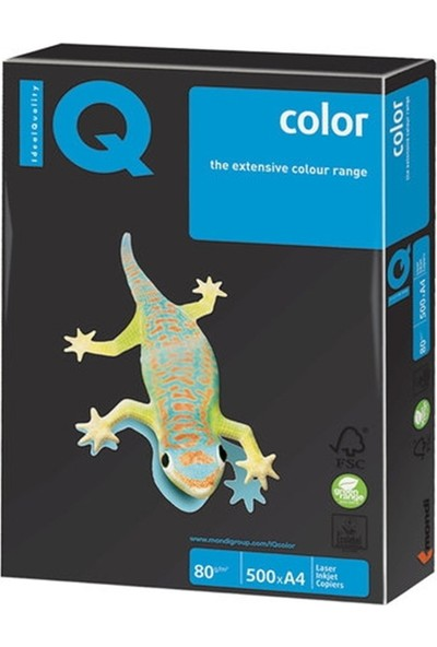 Iq Ne1341-Og52 Renkli Kağıt A4 80Gr/500 Siyah