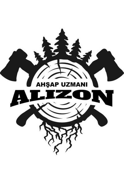 Alizon Ekran Altı Yükseltici Stant