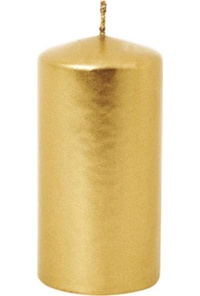 Euro Flora Gold Mum Dore 10 X 5 Cm