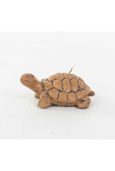 Euro Flora Dekoratif Kaplumbağa Mum 12,5X8X5 Cm