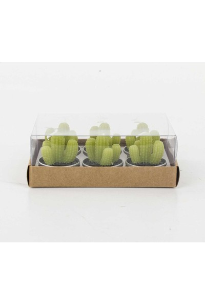 Euro Flora Mum Kaktüs Seti Tealıght 4X4,5 Cm 6'lı Paket