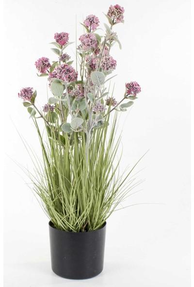 Euro Flora Dekoratif Saksıda Yapay Lavanta Saz 76 Cm