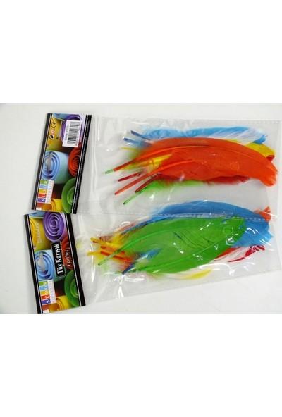 Südor Kuş (Kaz) Tüyü Renkli 12'li
