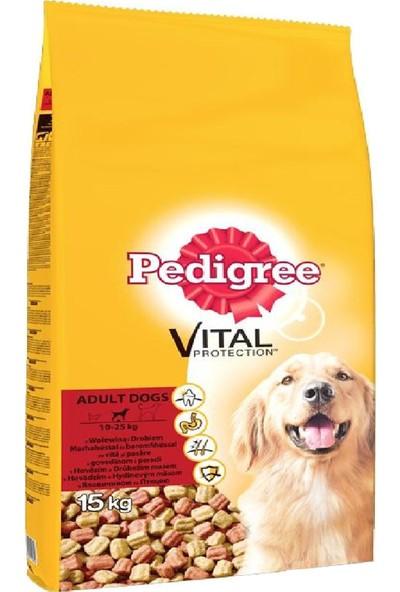 Pedigree Kuru Erişkin Biftek & Kümes Hayvanı Kuru Köpek Maması 15 kg