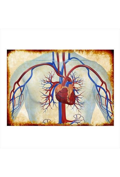 Tablomega Ahşap Tablo Eskitilmiş Kalp Anatomisi
