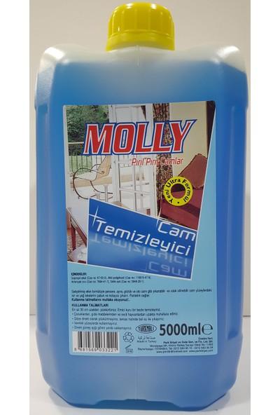 Molly Cam Temizleyici 5000 ml