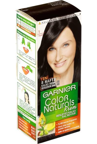 Garnier Color Naturals 1/0 - Siyah Saç Boyası