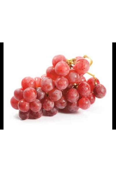 Doldur Sepete Red Globe Üzüm Fidanı Tüplü