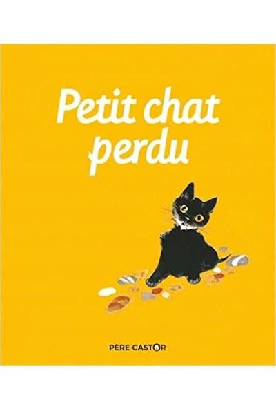 Petit Chat Perdu