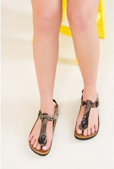 Fox Shoes Taba Kadın Sandalet B777805007