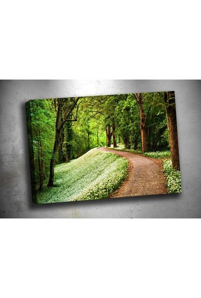 Caddeko Rpt54 Yeşil Kahverengi Orman Patika Tek Parça Kanvas Tablo 70 x 100 cm