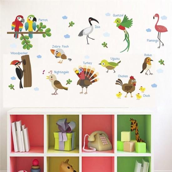 Color Casa Birds Names Kuş Adları İngilizce Montessori Sticker