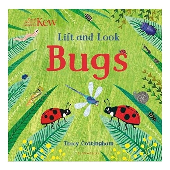 Lift And Look: Bugs