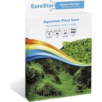Eurostar Bitki Tohumu Hemianthus Callitrichoides