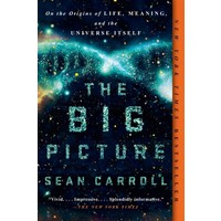 The Big Picture: On The Origins Of Life, Meaning And The Universe Itself - Sean Carroll