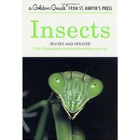 Golden Guide Insects - Clarence Cottam
