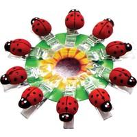 Can Uğur Böcekli Mini Mandal 4 x 2 cm 20 Adet
