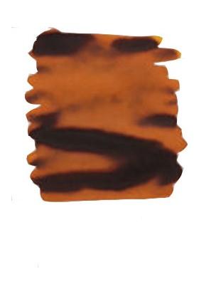 Krishna Kot Massi Series Orange Honey 20 Ml Şişe Mürekkep
