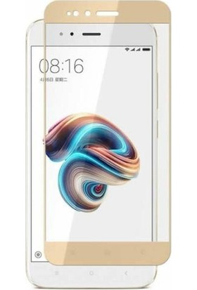 Case Street Xiaomi Mi A1 Full Kapatan Renkli Cam Gold